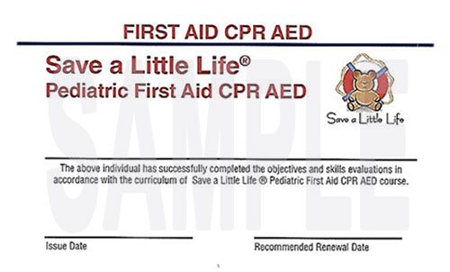 pediatric cpr and first aid comprehensive – save a little life